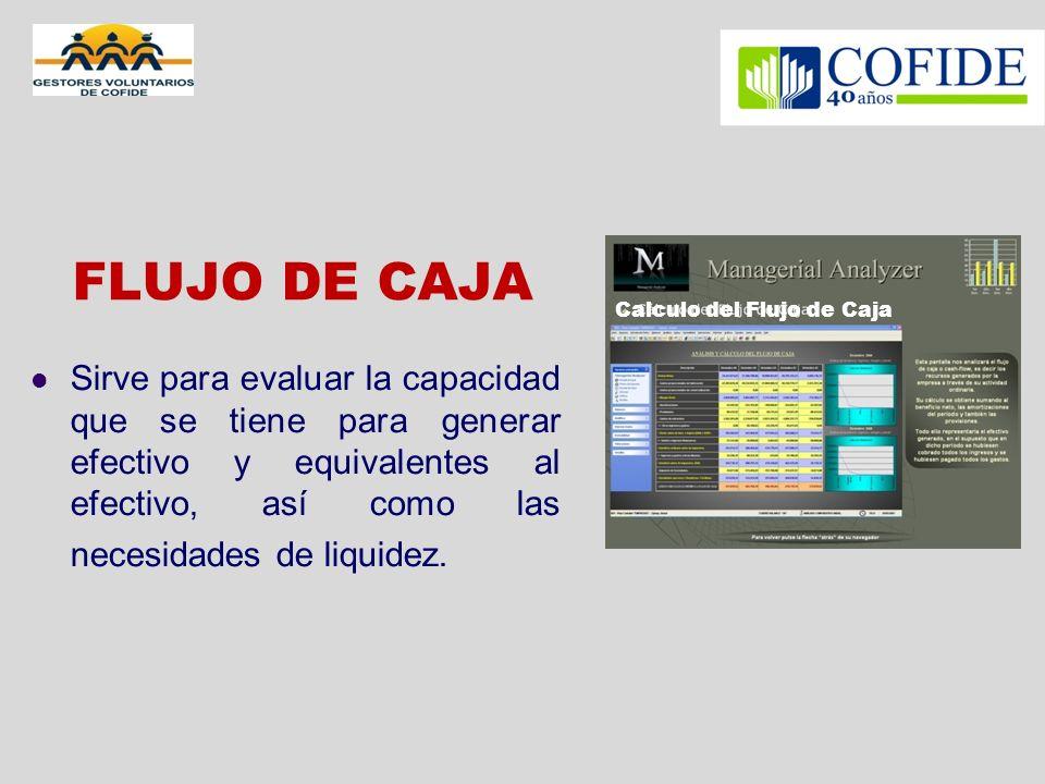 FLUJO DE CAJA Calculo del Flujo de Caja.