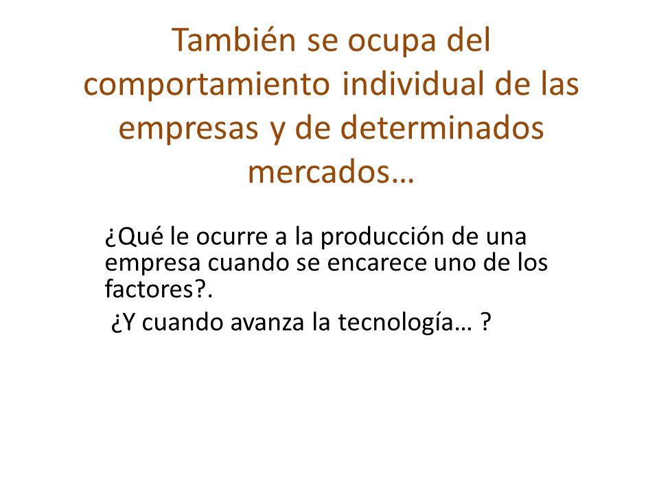 También se ocupa del comportamiento individual de las empresas y de determinados mercados…