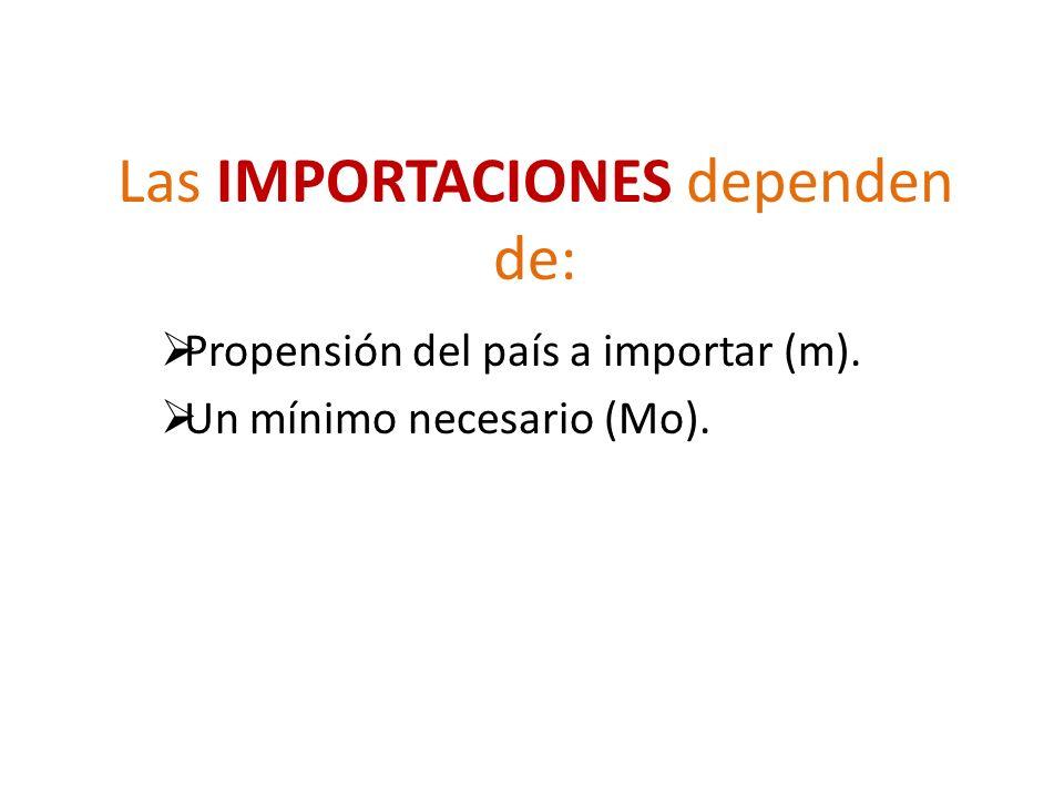 Las IMPORTACIONES dependen de: