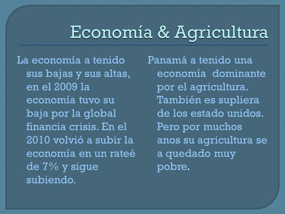 Economía & Agricultura