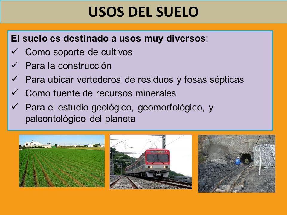 USOS DEL SUELO El suelo es destinado a usos muy diversos: