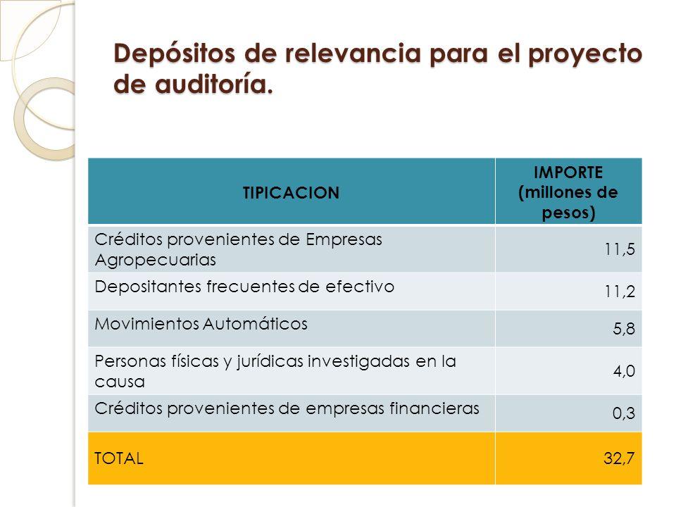 Depósitos de relevancia para el proyecto de auditoría.