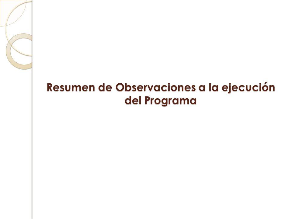 Resumen de Observaciones a la ejecución del Programa