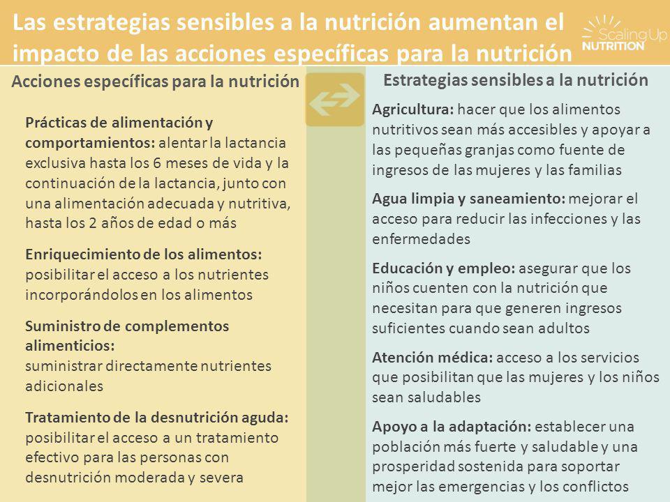 Las estrategias sensibles a la nutrición aumentan el