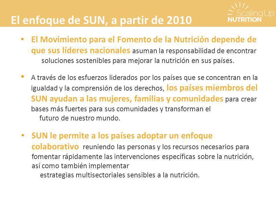 El enfoque de SUN, a partir de 2010