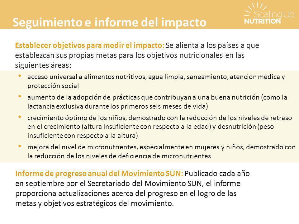 Seguimiento e informe del impacto
