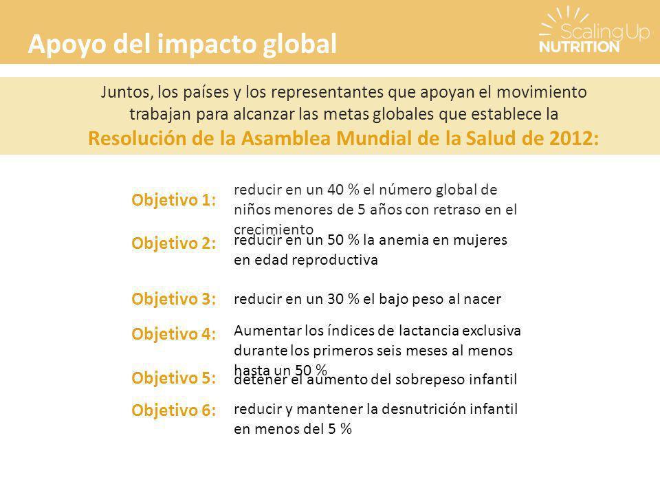 Resolución de la Asamblea Mundial de la Salud de 2012: