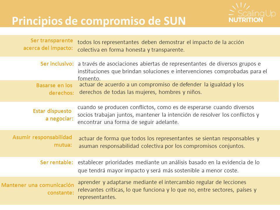 Principios de compromiso de SUN