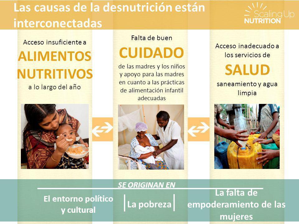 Las causas de la desnutrición están