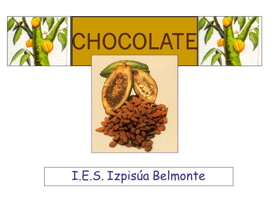I.E.S. Izpisúa Belmonte