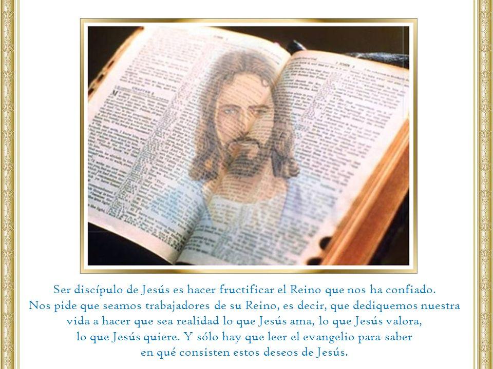lo que Jesús quiere. Y sólo hay que leer el evangelio para saber