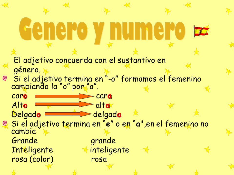 Genero y numero El adjetivo concuerda con el sustantivo en género.