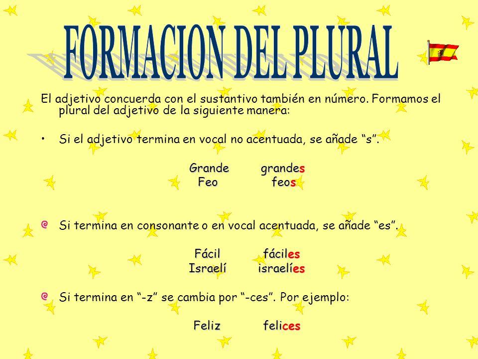FORMACION DEL PLURAL El adjetivo concuerda con el sustantivo también en número. Formamos el plural del adjetivo de la siguiente manera: