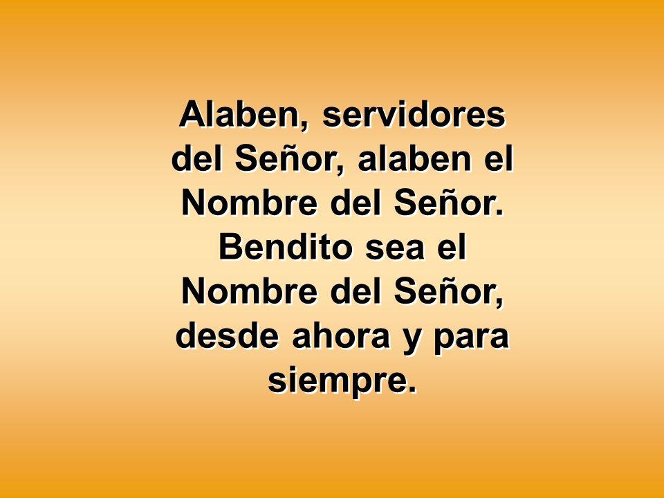 Alaben, servidores del Señor, alaben el Nombre del Señor