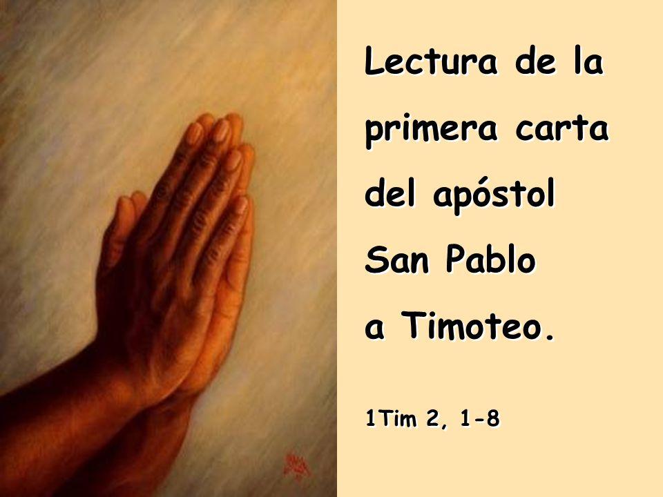 Lectura de la primera carta del apóstol San Pablo a Timoteo.