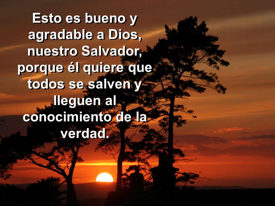 Esto es bueno y agradable a Dios, nuestro Salvador, porque él quiere que todos se salven y lleguen al conocimiento de la verdad.