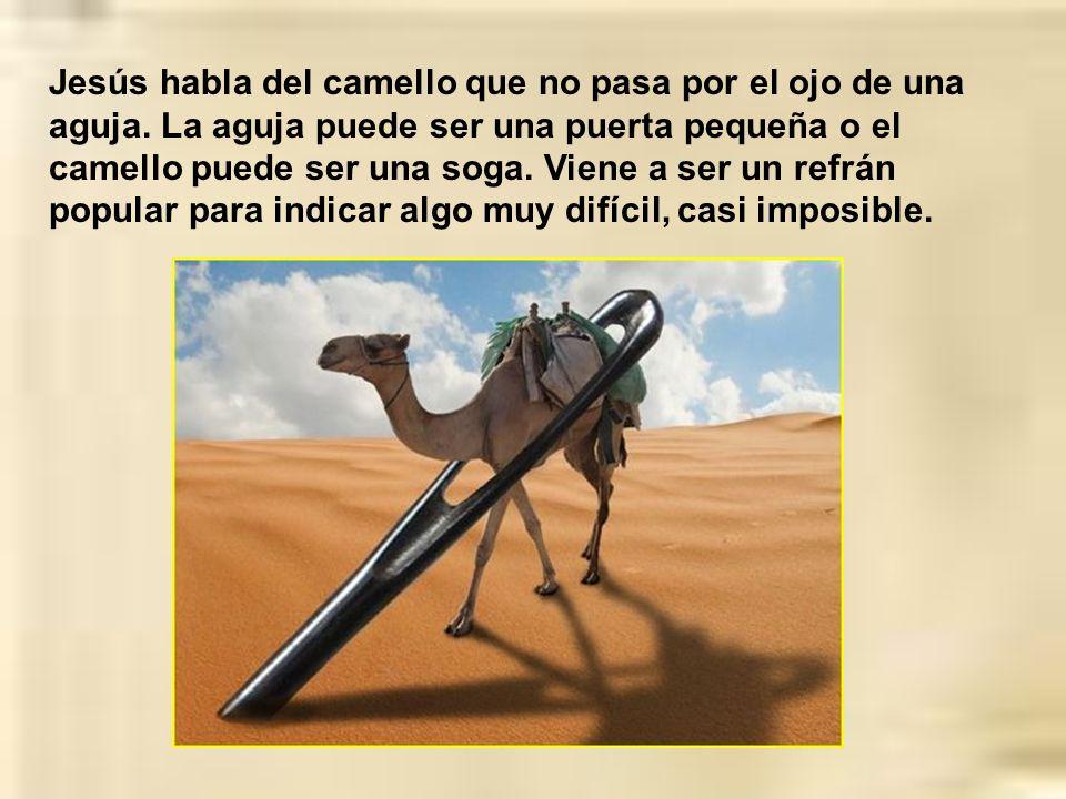 Jesús habla del camello que no pasa por el ojo de una aguja