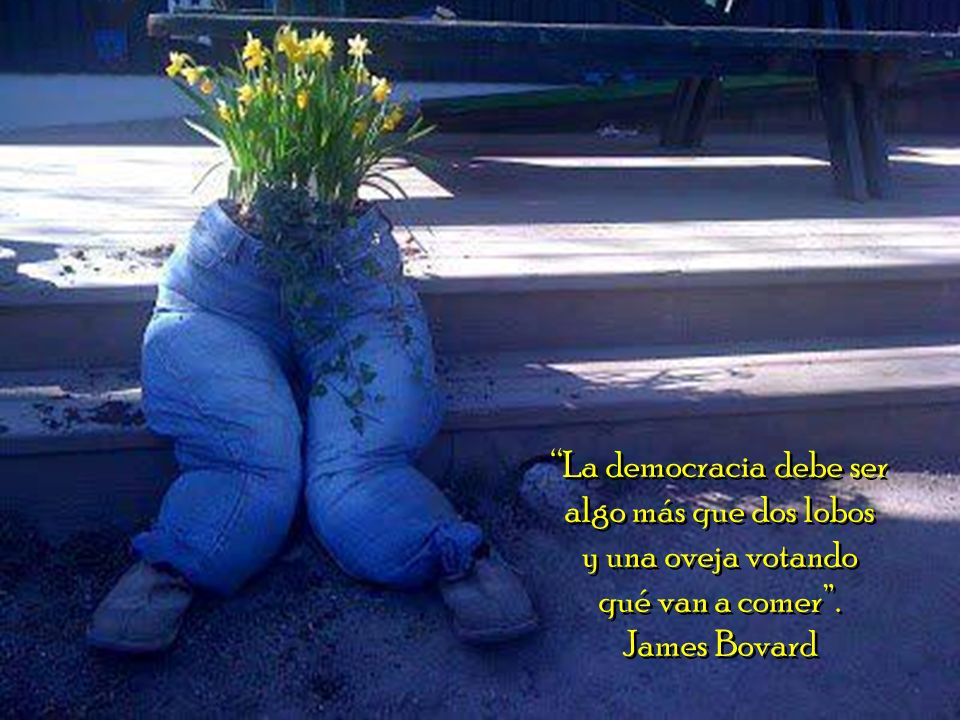La democracia debe ser algo más que dos lobos y una oveja votando qué van a comer .