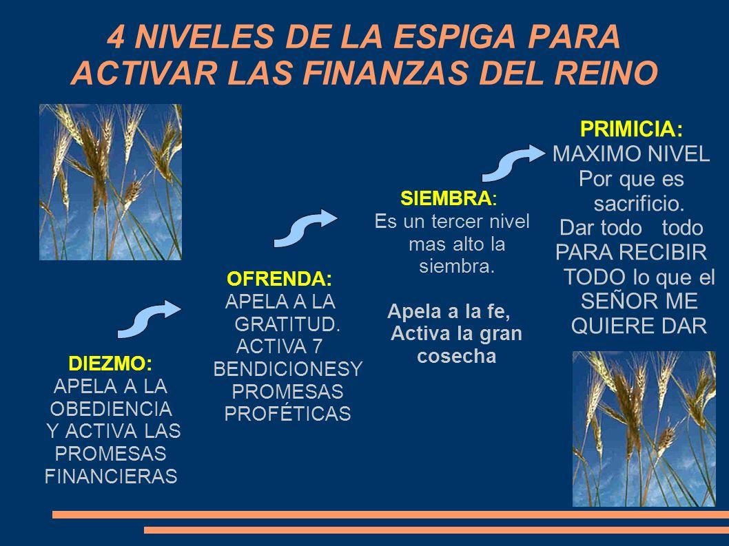 4 NIVELES DE LA ESPIGA PARA ACTIVAR LAS FINANZAS DEL REINO