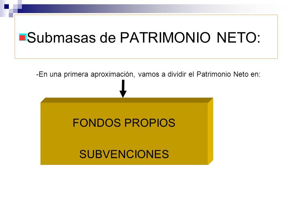 Submasas de PATRIMONIO NETO: