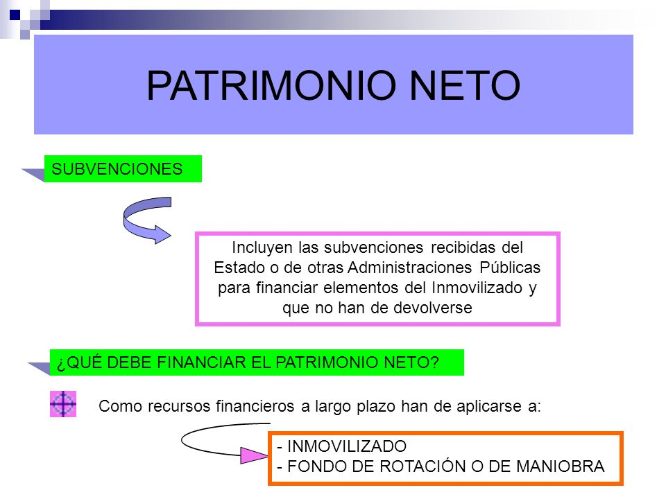 PATRIMONIO NETO SUBVENCIONES