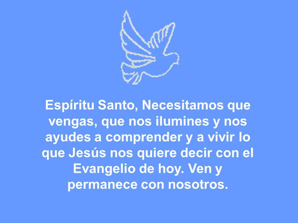 Espíritu Santo, Necesitamos que vengas, que nos ilumines y nos ayudes a comprender y a vivir lo que Jesús nos quiere decir con el Evangelio de hoy.