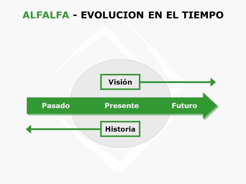 ALFALFA - EVOLUCION EN EL TIEMPO