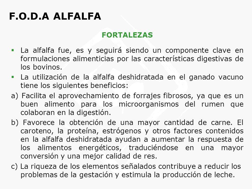 F.O.D.A ALFALFA FORTALEZAS