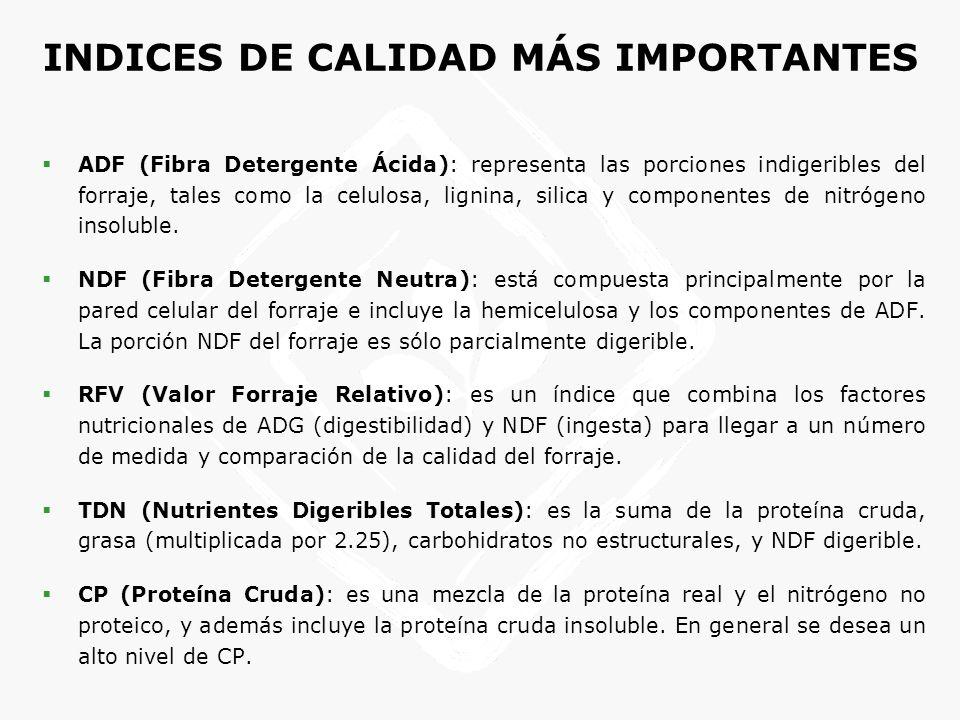 INDICES DE CALIDAD MÁS IMPORTANTES