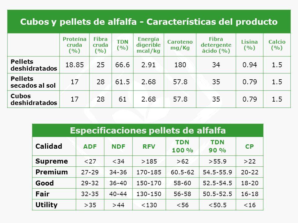 Cubos y pellets de alfalfa - Características del producto