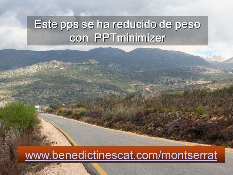 Este pps se ha reducido de peso con PPTminimizer