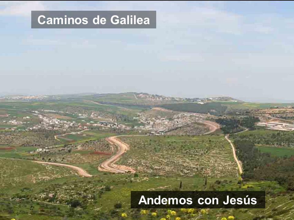 Caminos de Galilea Andemos con Jesús