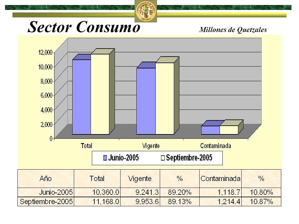 Sector Consumo Millones de Quetzales