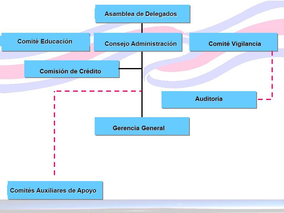 Asamblea de Delegados Comité Educación. Consejo Administración. Comité Vigilancia. Comisión de Crédito.
