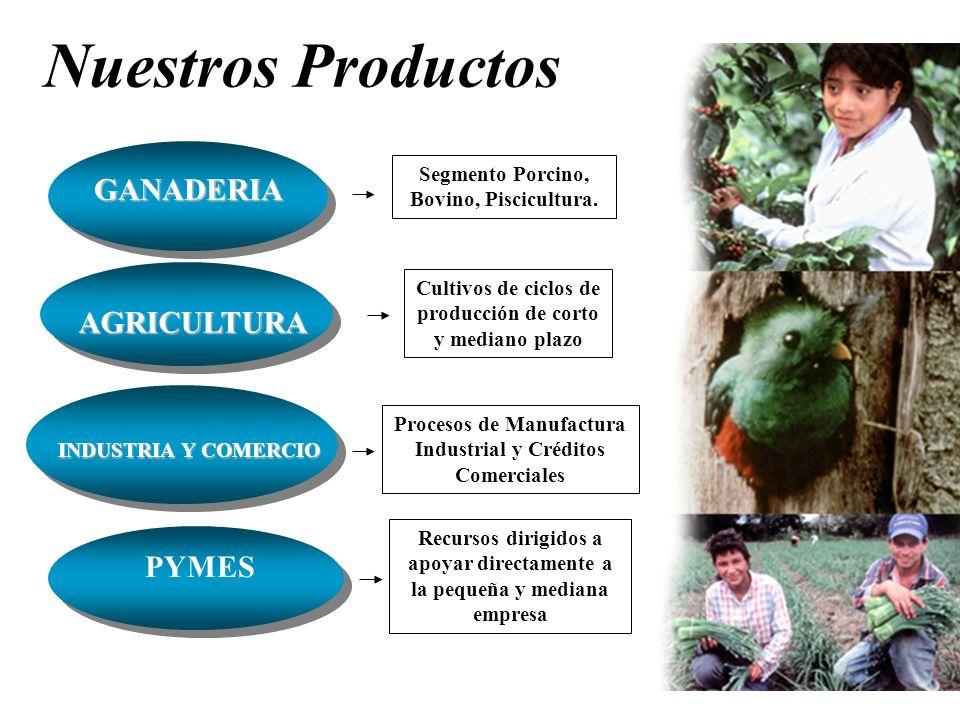 Nuestros Productos GANADERIA AGRICULTURA PYMES
