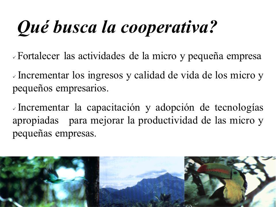 Qué busca la cooperativa