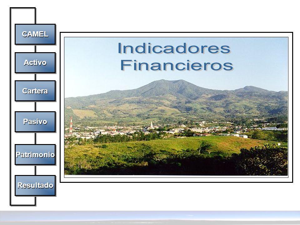 Indicadores Financieros CAMEL Activo Cartera Pasivo Patrimonio