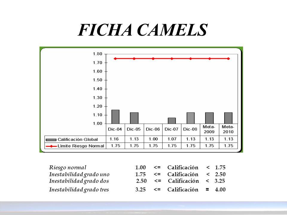 FICHA CAMELS Riesgo normal 1.00 <= Calificación < 1.75