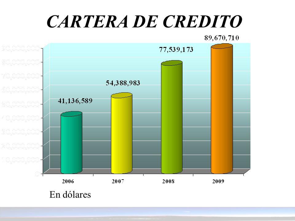 CARTERA DE CREDITO En dólares