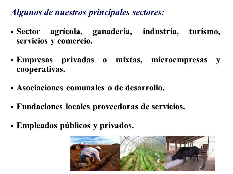 Algunos de nuestros principales sectores: