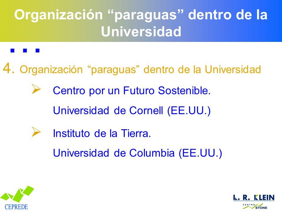 Organización paraguas dentro de la Universidad