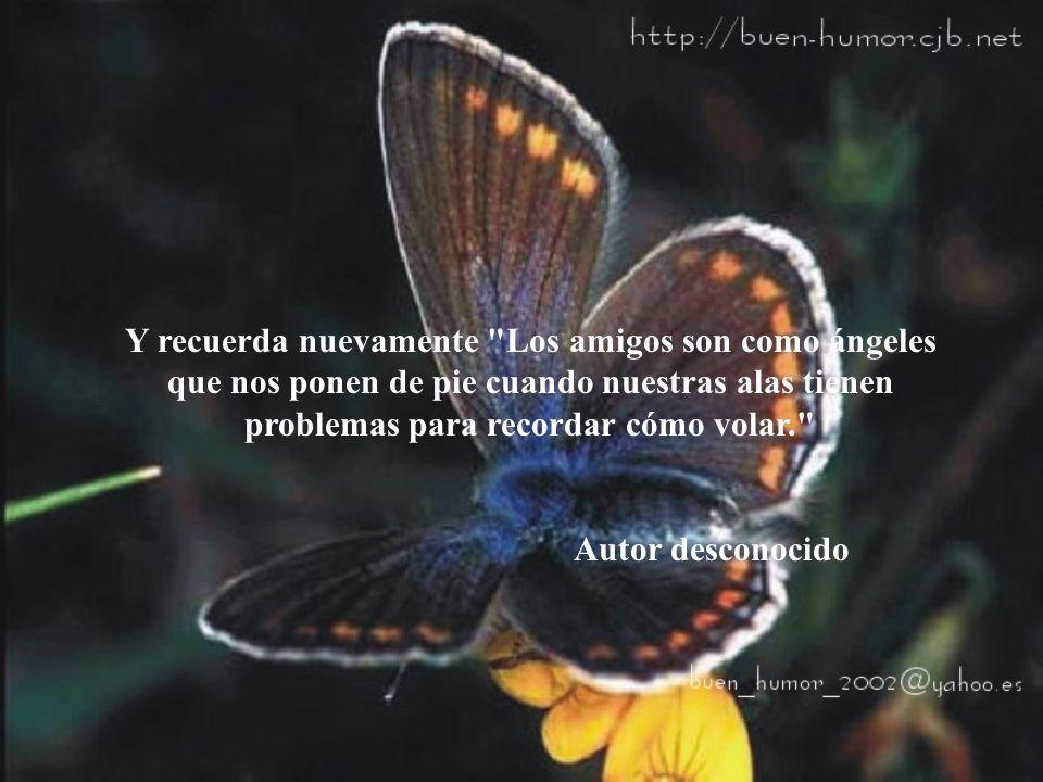 Y recuerda nuevamente Los amigos son como ángeles que nos ponen de pie cuando nuestras alas tienen problemas para recordar cómo volar.