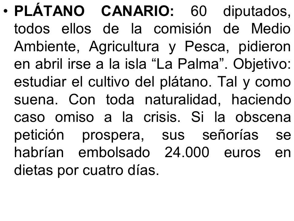 PLÁTANO CANARIO: 60 diputados, todos ellos de la comisión de Medio Ambiente, Agricultura y Pesca, pidieron en abril irse a la isla La Palma .