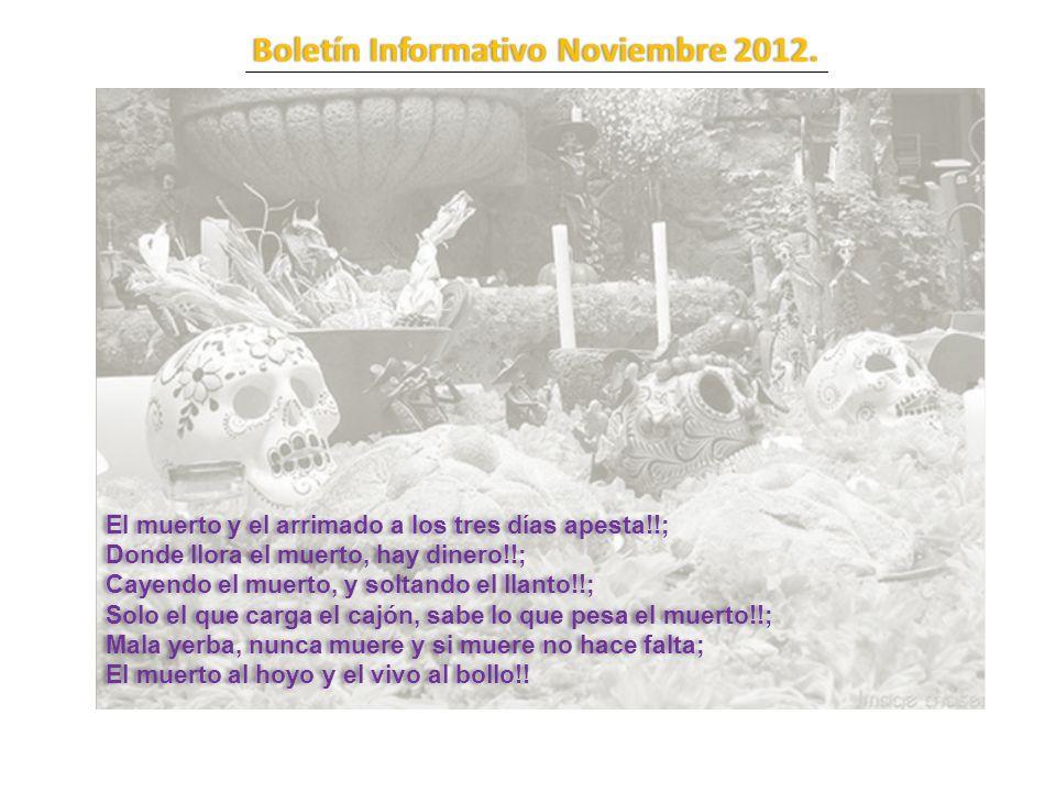Boletín Informativo Noviembre 2012.