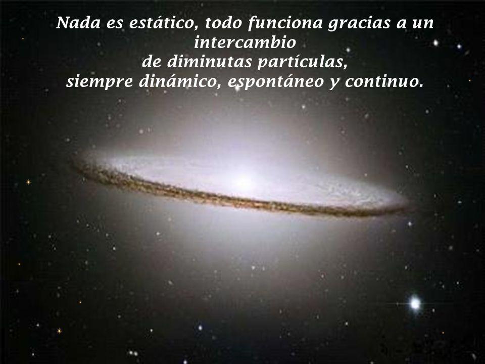 Nada es estático, todo funciona gracias a un intercambio de diminutas partículas, siempre dinámico, espontáneo y continuo.