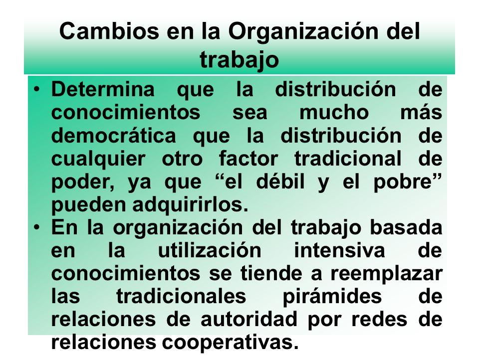 Cambios en la Organización del trabajo