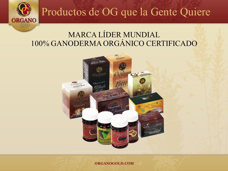 100% GANODERMA ORGÁNICO CERTIFICADO