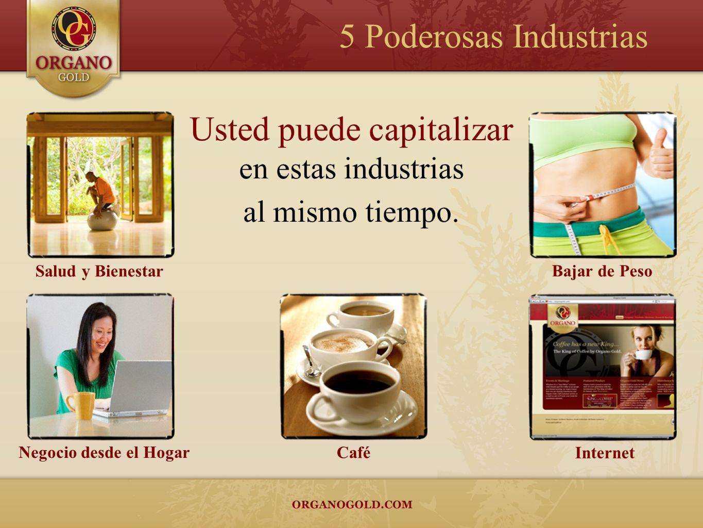 Usted puede capitalizar en estas industrias