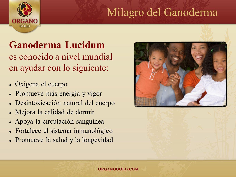 Milagro del Ganoderma Ganoderma Lucidum es conocido a nivel mundial