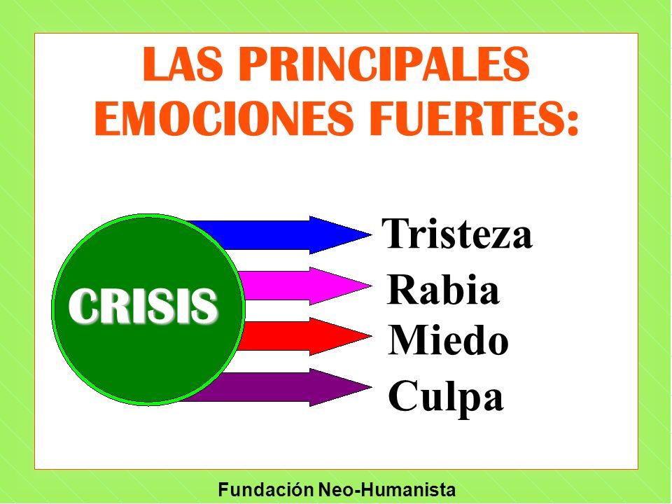 LAS PRINCIPALES EMOCIONES FUERTES: